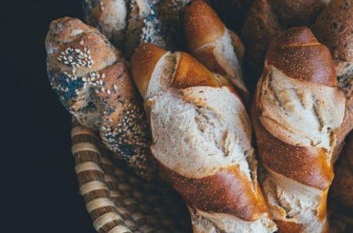 Los perros pueden comer pan