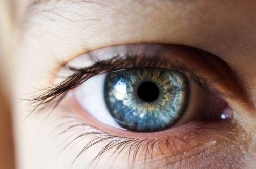¿Qué son los ojos?