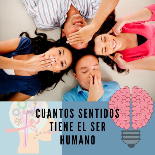 Cuantos sentidos tiene el ser humano