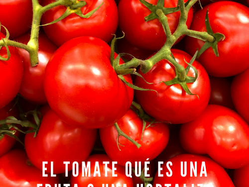 El tomate qué es una fruta o una hortaliza